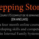 Stepping Stone: 16 semaines d'apprentissage du modèle IFS avec Derek Scott (pour les anglophones)